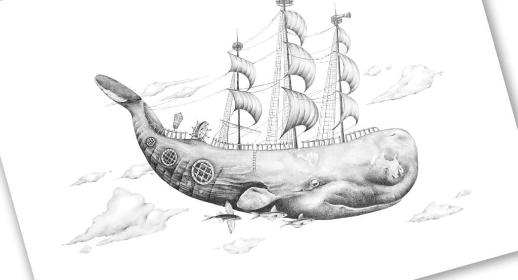 banner-whaleM'Hoy'-1024x553