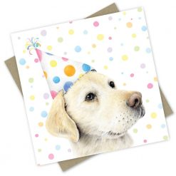 Birthday dogs and Cats (Cards)